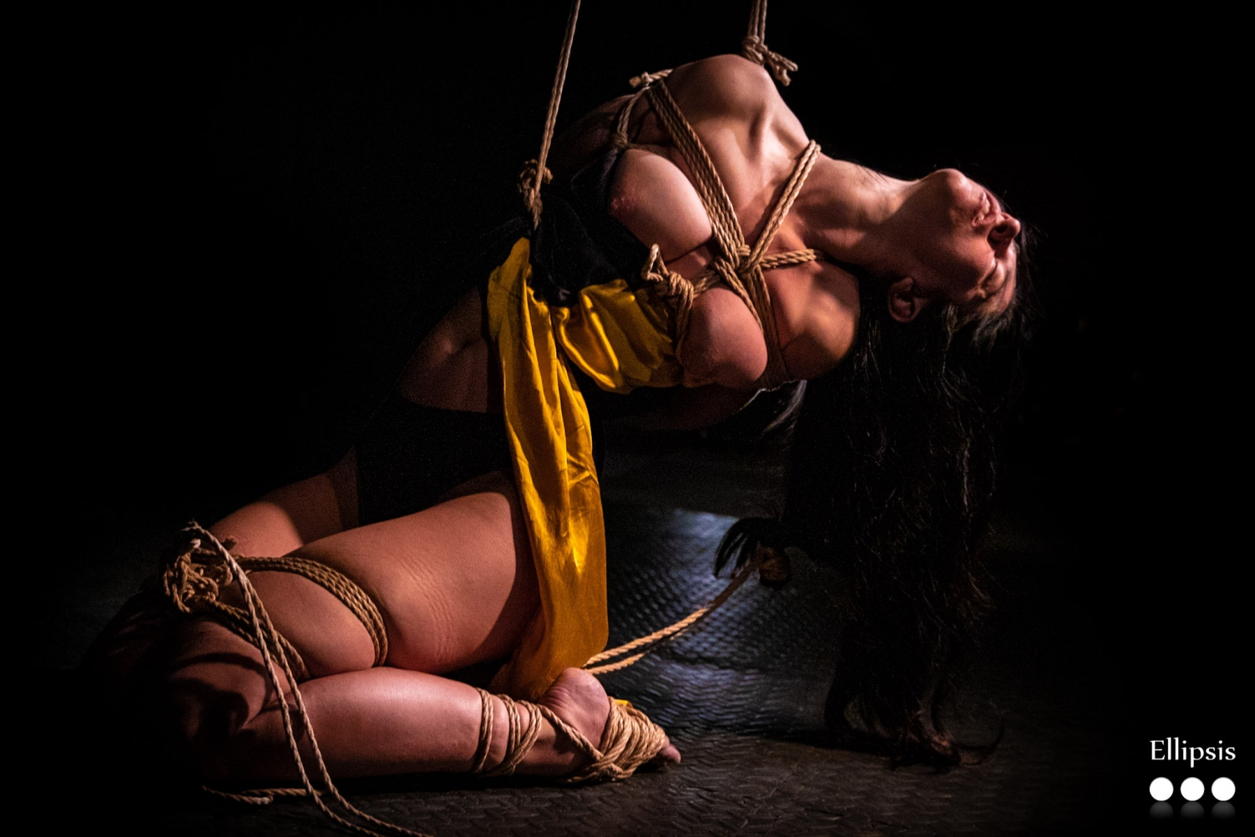 Kinbaku Performance